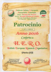 Patrocinio HERO sinape